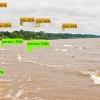 TensorFlow สร้าง AI จาก Google เพิ่ม Object Detection API
